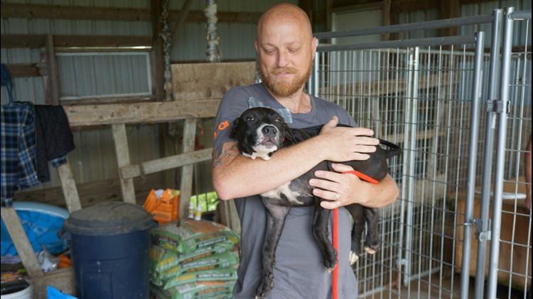 Wis animal cruelty 3_1536251780277.jpg.jpg