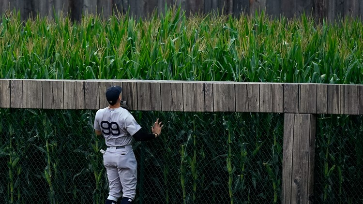Field of Dreams success; Kawhi Leonard's deal; today's sports stories you need to know