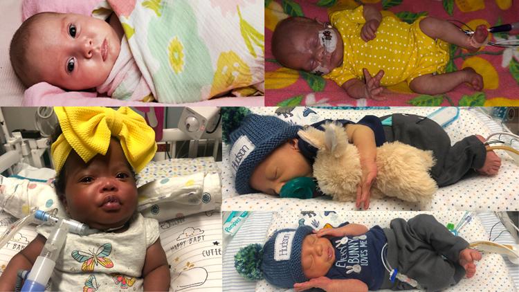 Babies brighten Levine Children's Neonatal Nursery for Easter