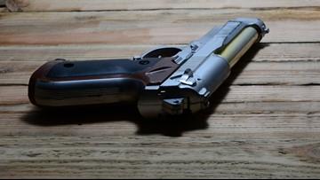 NC town declares itself 'gun sanctuary'