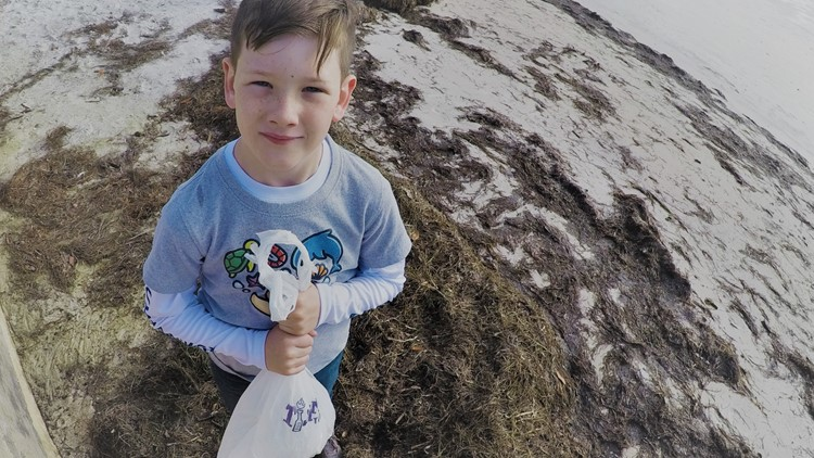 7-year-old wins money, plans to save the ocean with t-shirts