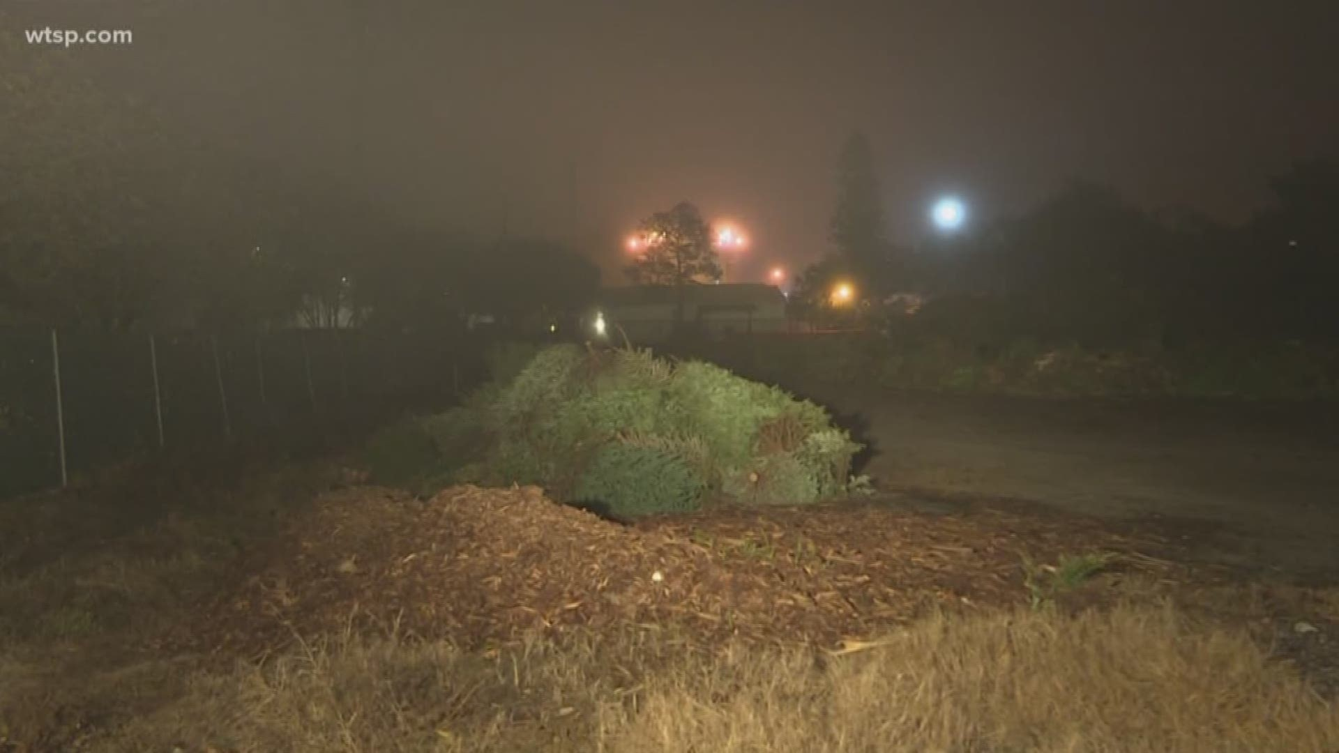 When Is Hampton City Christmas Holiday Trash Pickup For 2020 Christmas tree recycling in Hampton Roads 2020 | 13newsnow.com