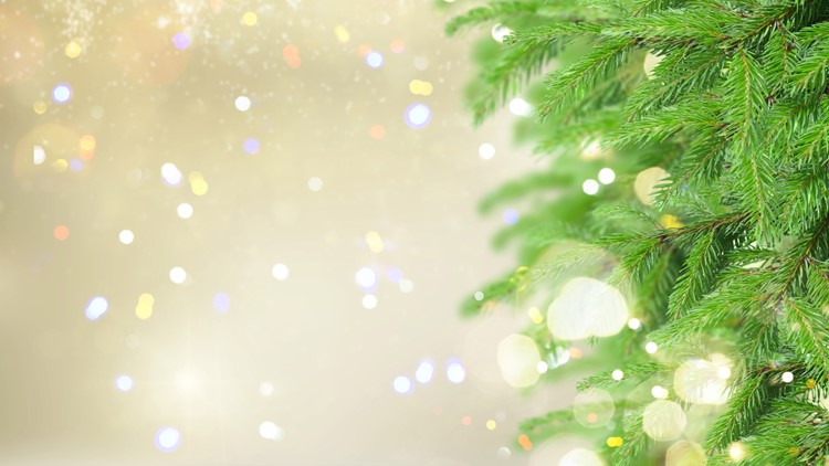 Here's how to pick the hottest Christmas tree, flames not included