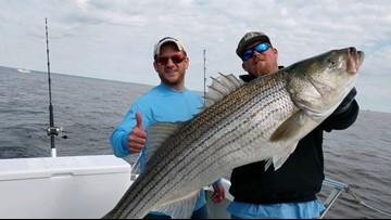 Chesapeake Bay Foundation, recreational anglers react to new striped bass restrictions