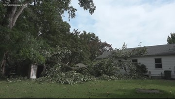 Newport News neighbors cleaning up as storms bring trees down