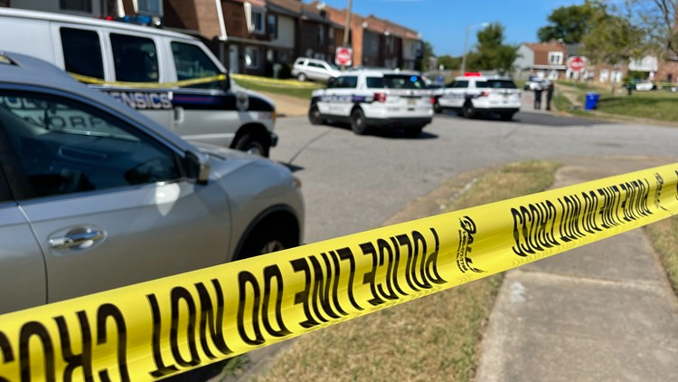 UPDATE: Person killed in Norfolk shooting identified as 21-year-old man