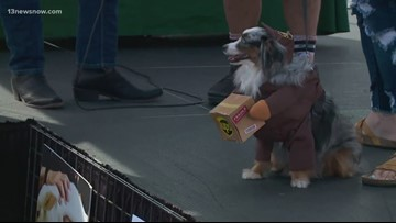 Pets get into Halloween spirit at Malloween on the Boolvd in Virginia Beach