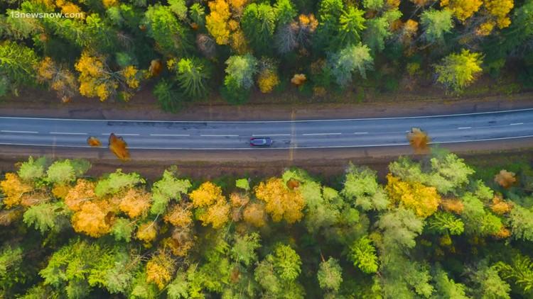 Fall foliage in October in Virginia