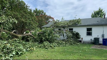 Showers and storms leave behind damage in Newport News