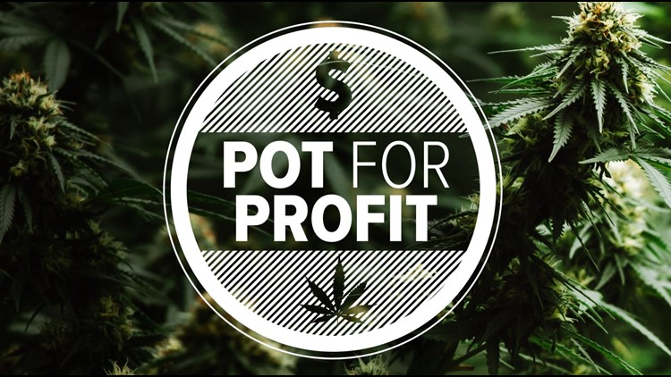 POT FOR PROFIT: Virginia lawmakers debate legalizing marijuana