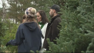 People Looking for Christmas Trees Find Fewer Choices and Higher Prices