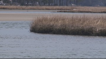 Conservationists say federal plan would hurt Chesapeake Bay