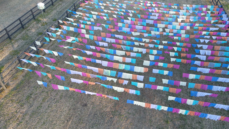 Virginia Beach teen's art installation will catch your eye from the sky