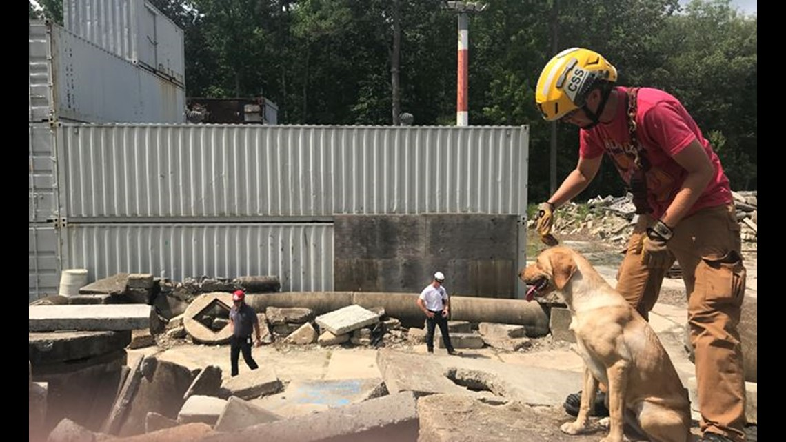 Search And Rescue Dog Training Virginia Beach