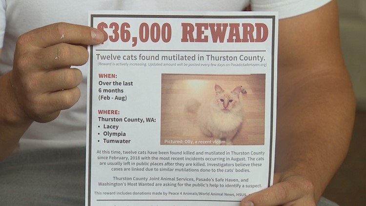 KING_Cat_Killer_Reward_1535681374271-17715115.JPG