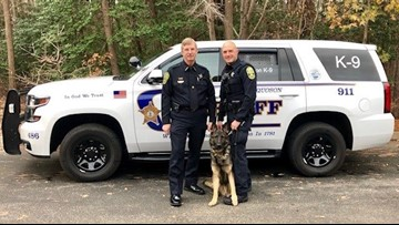 York-Poquoson Sheriff's Office welcomes new K-9, Saber