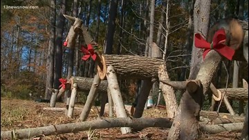 INSIDE ACCESS: Henley Farms in Pungo offers Christmas trees and more