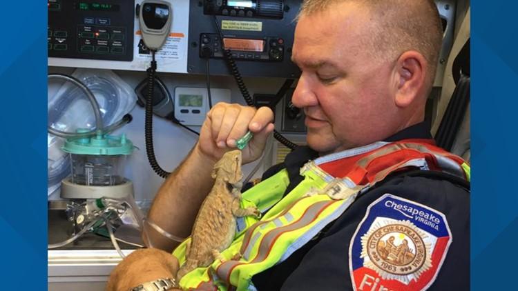 Chesapeake Fire Department Lizard Photo