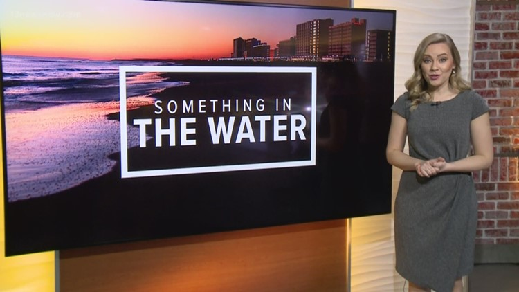Pharrell's 'Something in the Water' lineup announced