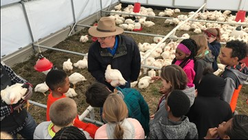Norfolk fourth graders learn about sustainable farming at Chesapeake family farm