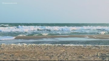 NEWSMAKER: Preventing accidents at the beach