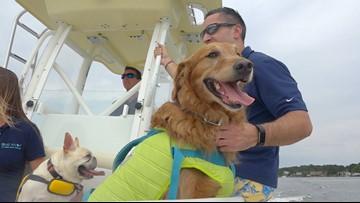 BENTLEY'S CORNER: Dog boating safety