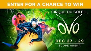 Cirque Du Soleil OVO sweepstakes