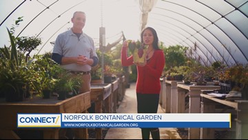 CONNECT with Norfolk Botanical Garden