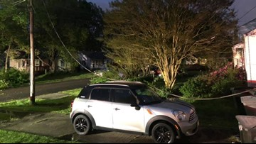 Hampton neighbors say 'scary' winds toppled a tree, brought down power lines