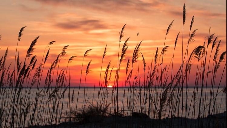 Saving the Bay: Chesapeake Bay restoration at critical crossroads, still 'dangerously out of balance'