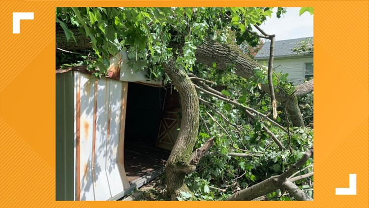 Shed damage in Newport News