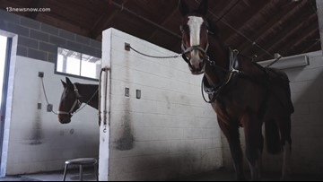 INSIDE ACCESS: Colonial Williamsburg Coach and Stables