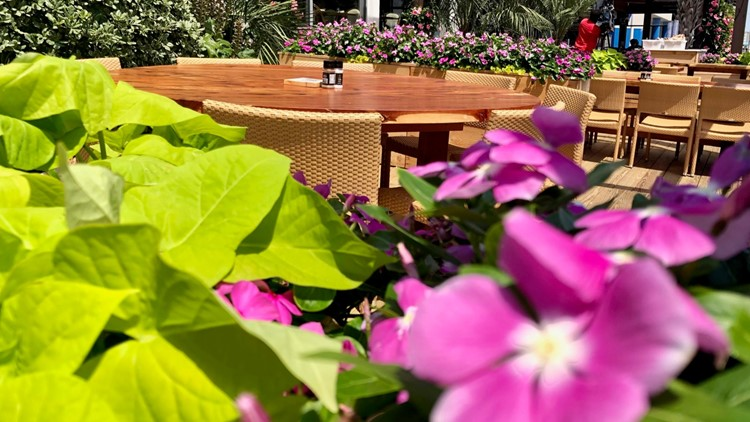 Virginia Beach restaurant owners get an extension for outdoor dining