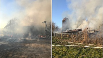 Suffolk barn fire near Nansemond Parkway kills 4 dogs, 8 puppies