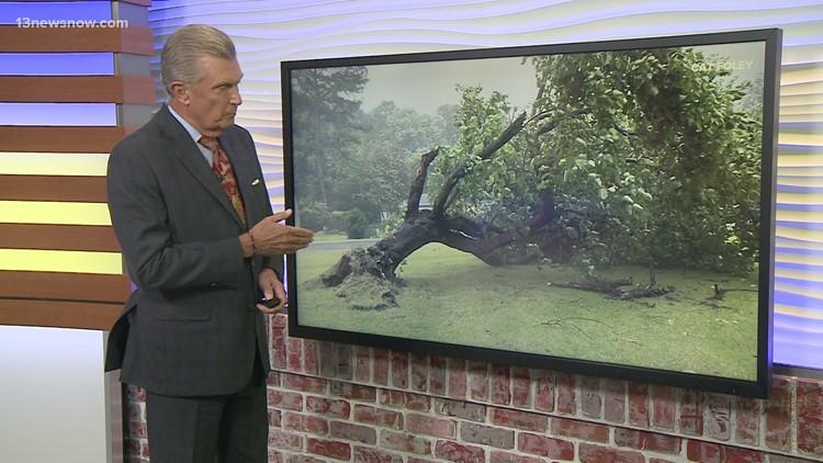 Elsa Aftermath: Some damage across Hampton Roads