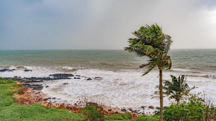 Forecasters predict busy 2020 Atlantic hurricane season