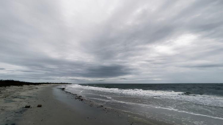 Take a walk by the Chesapeake Bay at Grandview Nature Preserve in Hampton