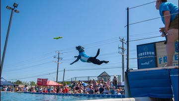 Annual Pet Lovers' Extravaganza brings fun-filled events this weekend