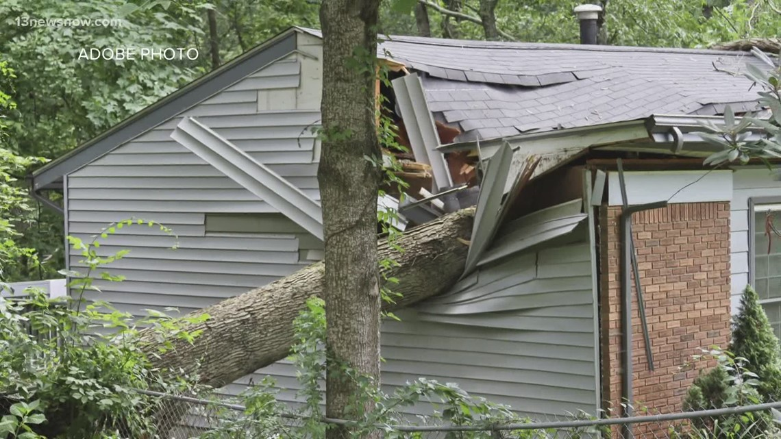 VERIFY: Who gets the bill for toppled trees?