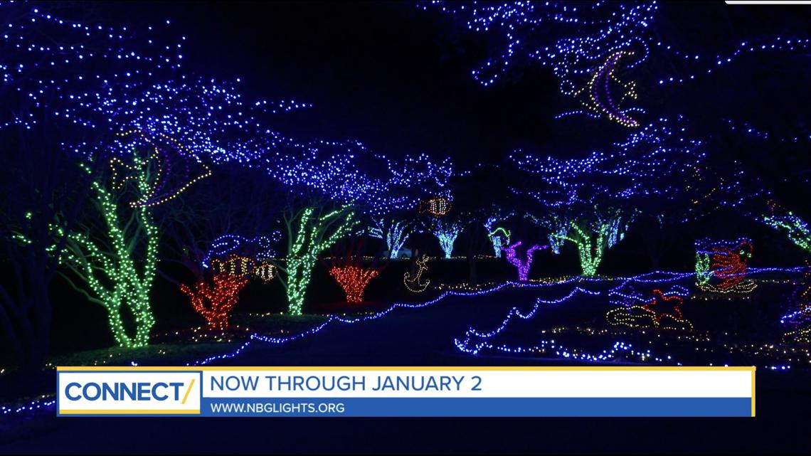 CONNECT with Norfolk Botanical Garden: Dominion Energy Garden of Lights