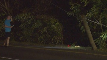 Traffic Alert: Vehicle knocks out power pole on Indian River Road