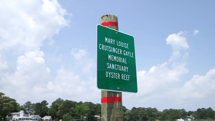 Newly dedicated oyster reef honors mass shooting victim