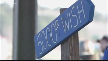 Chesapeake girl has wish granted