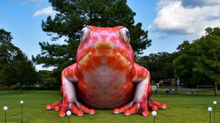 Virginia Zoo announces first-ever drive-thru exhibit coming November