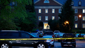 Virginia State Crime Commission gun violence report offers no recommendations