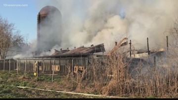 Twelve dogs, puppies killed in Suffolk barn fire