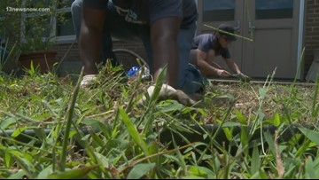 Lifehouse Newport News church members volunteer time in 'For Our City' event