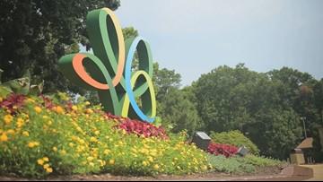 Busch Gardens teases new ride | 13newsnow com