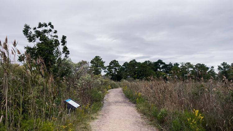 Photos: Grandview Nature Preserve