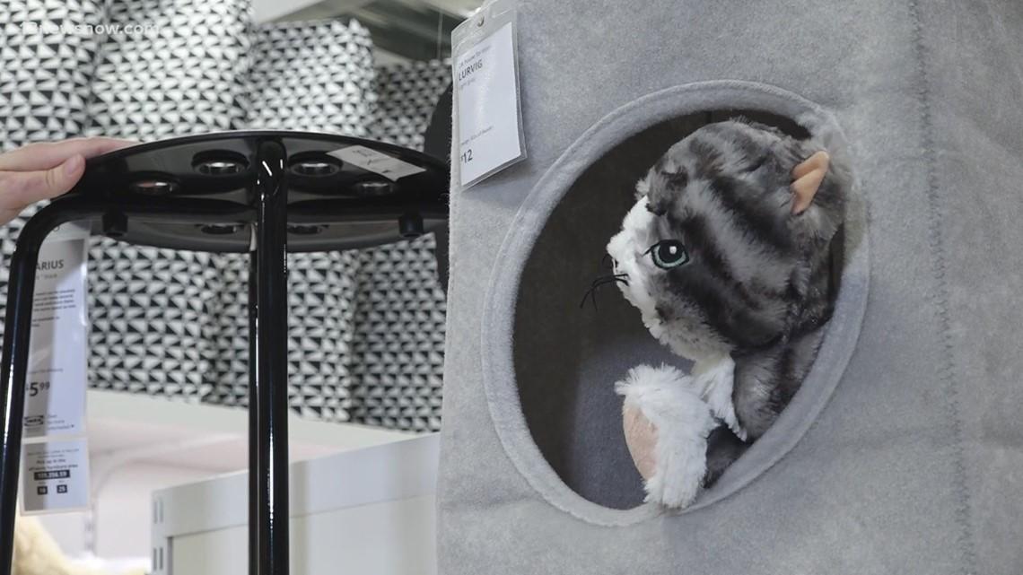 Bentley & Friends: IKEA's Pet Furniture Line
